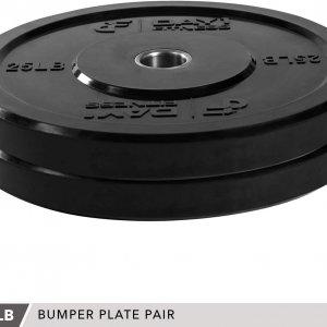 Vægtskiver (2 stk.) på 12 kg